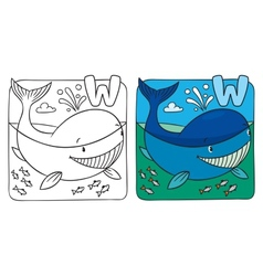 Little whale coloring book Alphabet W vector