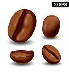 realistic coffee beans vector image
