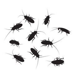 Set of black silhouette cockroach with detail vector