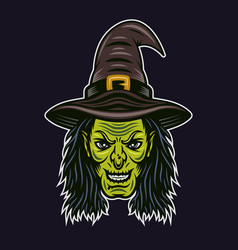 witch head character colorful vector image
