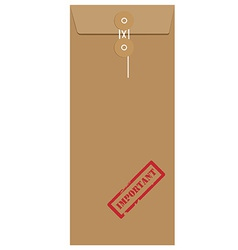 Brown long envelope with stamp important vector image