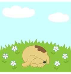 Dog sleeping on the meadow vector image vector image