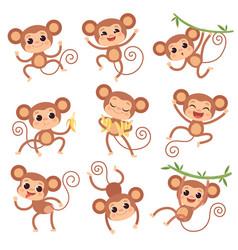 Baby monkey wild cartoon animals playing vector
