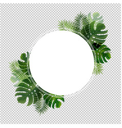 ball banner with leaf palm transparent background vector image