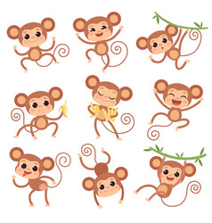 Bamonkey wild cartoon animals playing and vector