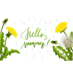 Banner hello summer dandelion seed background vector