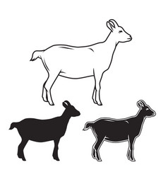 Hand drawn goat set vector