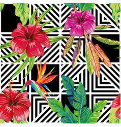 hibiscus bird paradise leaves geometric black vector image