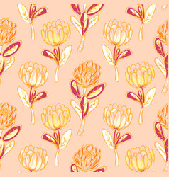 Orange protea flower seamless pattern vector