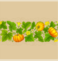 pumpkin plant pattern on color background vector image