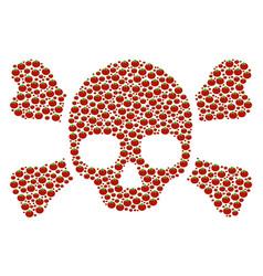 Skull crossbones composition of tomato vector