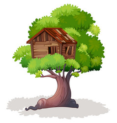 Treehouse on the tree vector
