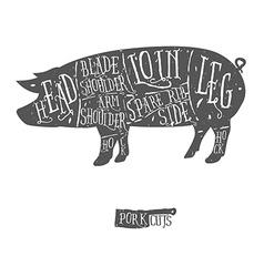 American cuts of pork scheme vector image