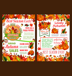 Autumn pumpkin fruit harvest sale poster vector