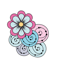 Beauty flowers with petals and ornamental design vector