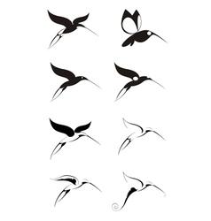 Birds of paradise decor set vector