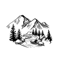 Mountain landscape with firs river and stones vector