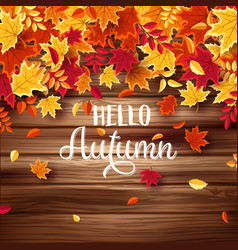 Autumn falling leaves with wood nature background vector