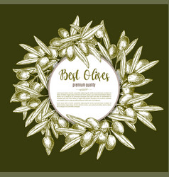 Green olive wreath sketch poster design vector
