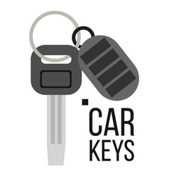 keys car icon of auto key keychain lock vector image