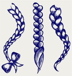 Women braid vector image