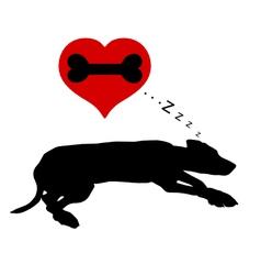 Dog dreams of bones vector image