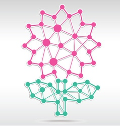 Flower Network vector image vector image