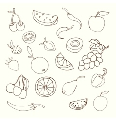 different fruits vector image
