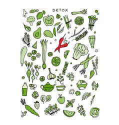Green vegetable set detox sketch for your design vector