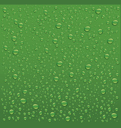 Many water drops on green backgrounds vector