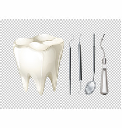 Tooth and dental equipments vector