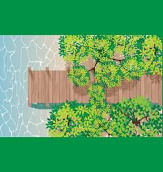topview wooden bridge in mangrove forest vector image