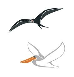 Albatross and pelican birds symbols vector image