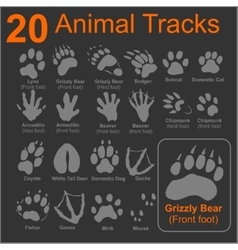 Animals Tracks - set vector image
