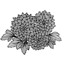 Floral bouquet vector