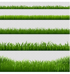 grass frame borders transparent background vector image