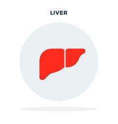 human liver concept in a circle flat isolated vector image