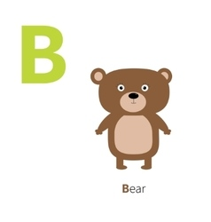 Letter B Bear Zoo alphabet English abc letters vector image
