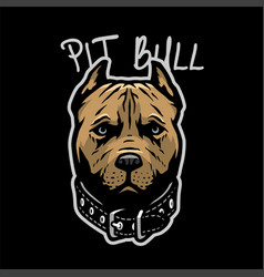 Pit bull head with a collar on a dark background vector