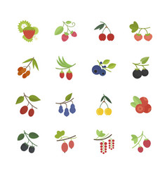 set flat icons berries vector image