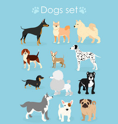 set of funny purebred dogs vector image