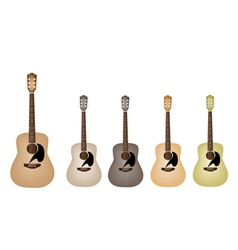 Beautiful Vintage Acoustic Guitars vector image