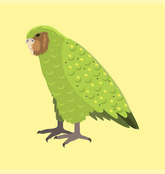 cartoon tropical kakapo parrot wild animal bird vector image
