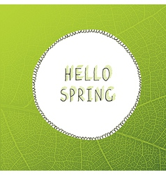 Hello spring leaf veins background vector