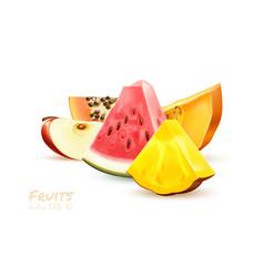 pineapple papaya watermelon apple fruit slice set vector image
