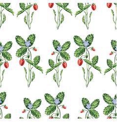 Seamless pattern drawn wild strawberry vector