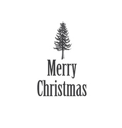 Simple marry christmas greeting card with pine vector