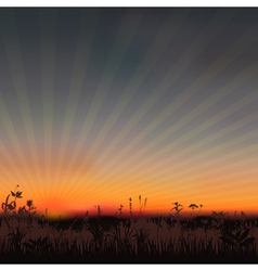 Sunset meadow vector