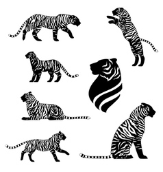 TigersSetstriped vector