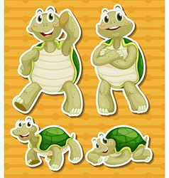Turtle set vector image vector image